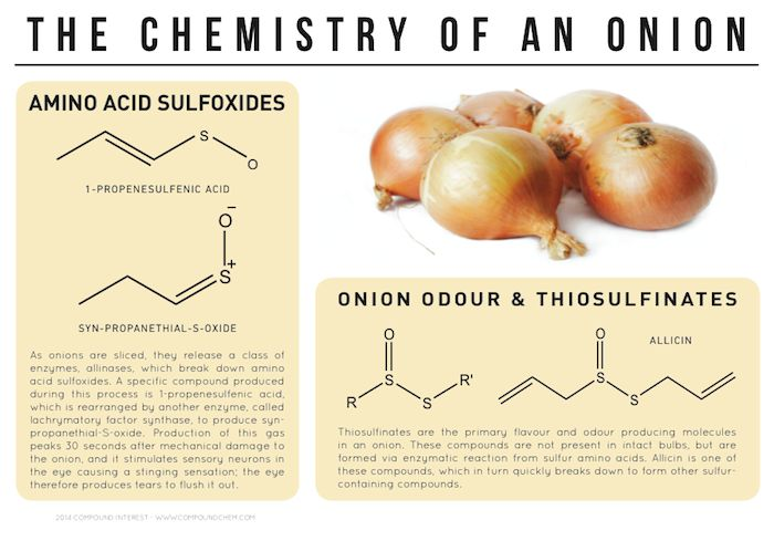 The chemical explanation behind why onions make you cry. Click on 'visit site' to read more & download.
