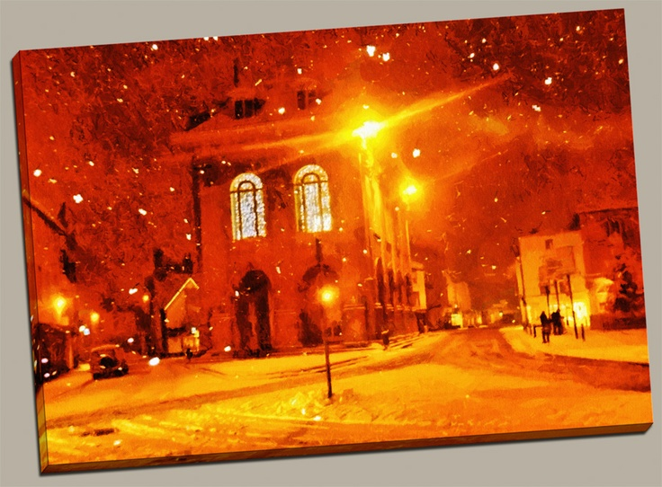 """""""The Snow Came Flying"""" www.romansolarphotography.com"""