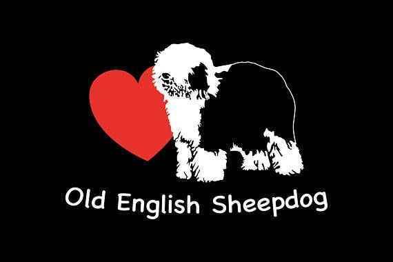 Etiqueta del vinilo antiguo perro pastor inglés