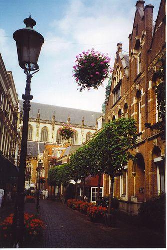Haarlem, Netherlands l All Around The World