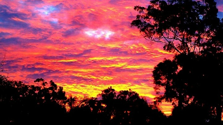 Fire in the sky. Qld