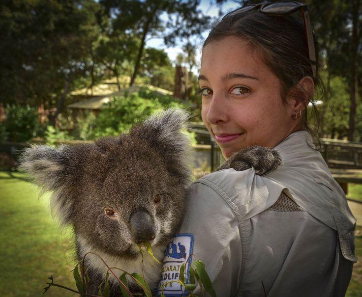 10 things we love about Ballarat. RoyalAuto April 2016. Photographer: Anne Morley #Ballarat #Goldfields #BallaratWildlifePark #Wildlife #Koala
