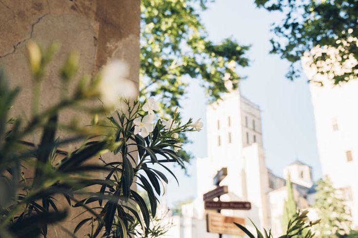 Avignon et Saint Rémy de Provence