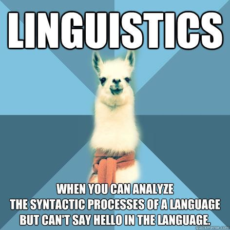 """""""Linguistics: When you can analyze the syntactic processes of a language but can't say hello in the language."""" I'm like this with Chinese... and Latin."""