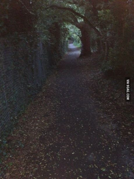 The path I take from work to home (London,UK)