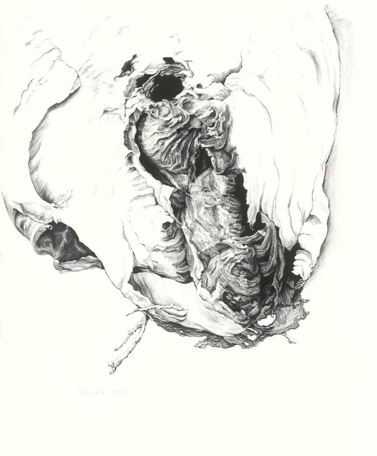 """Enter Here, 2012    28"""" x 21.5"""", charcoal on paper"""
