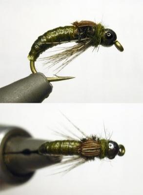 Green beadhead larval nymph
