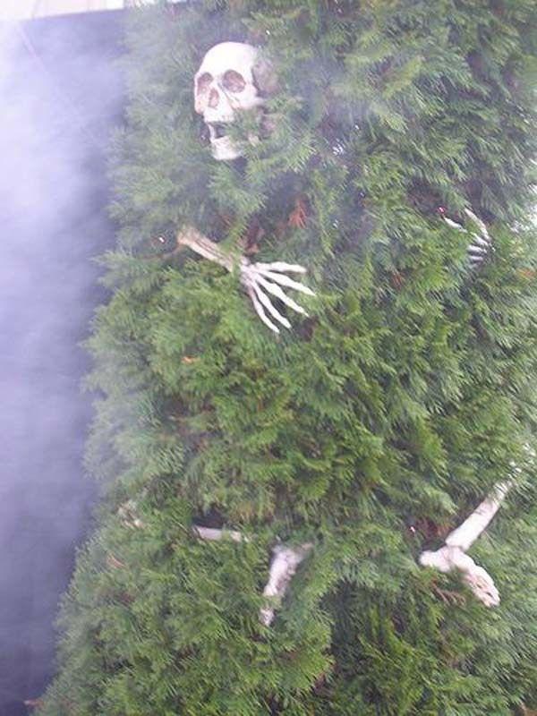 99 bezaubernde und gespenstische Möglichkeiten für Halloween (3) Bäume schmü… – Nicole