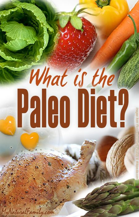 """Many people ask the question: What is the Paleo Diet? The Paleo Diet is pretty simple. It comes from the paleolithic era when cavemen were hunting and gathering their foods. This diet is also called the """"Hunter-Gatherer Diet"""", the """"Caveman Diet"""", and the """"Stone Age Diet"""".Man from the paleolithic era would eat meats they …"""