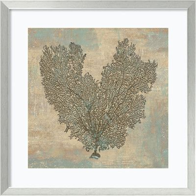 Amanti Art 'Aqua Fan Coral' by Caroline Kelly Framed Art Print