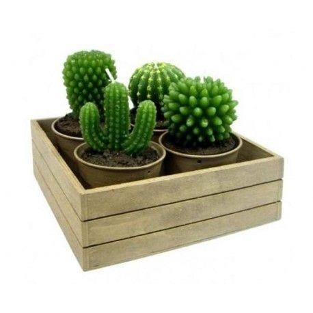 Zestaw świec Kaktus