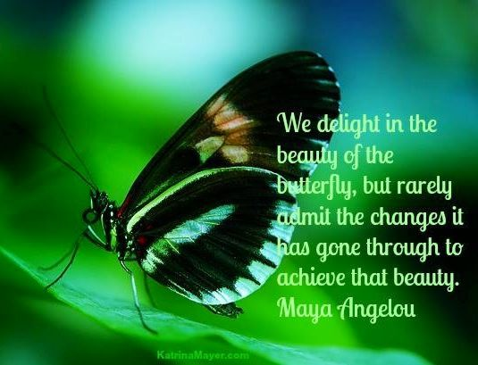 Positive Butterfly Quotes Angelou Hasshecom