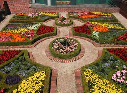 21 best images about knot gardens on pinterest gardens for Herb knot garden designs
