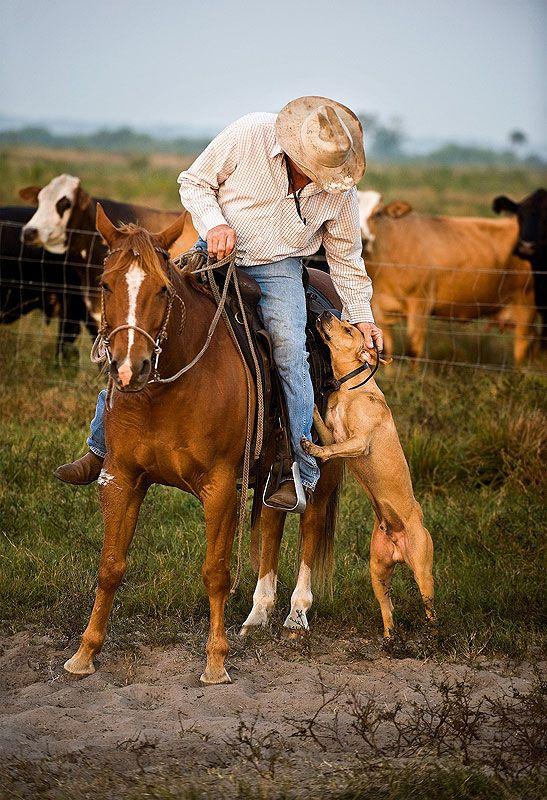 Cowboy and his dog, by Carlton Ward.