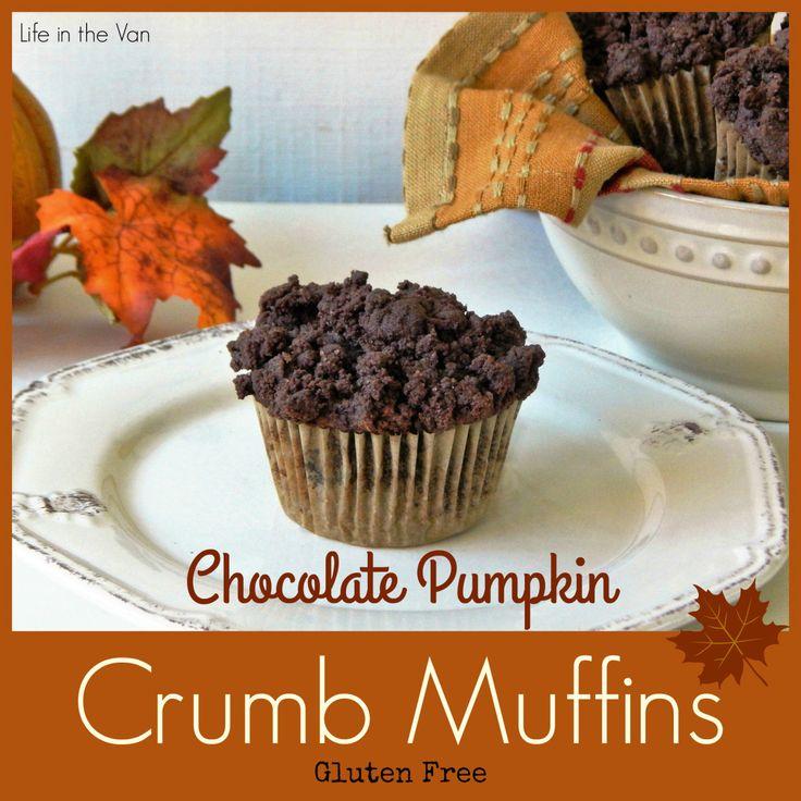 Gluten Free Chocolate Pumpkin Crumb Muffins | Life in the Van