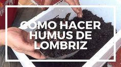 Como Hacer Humus De Lombriz