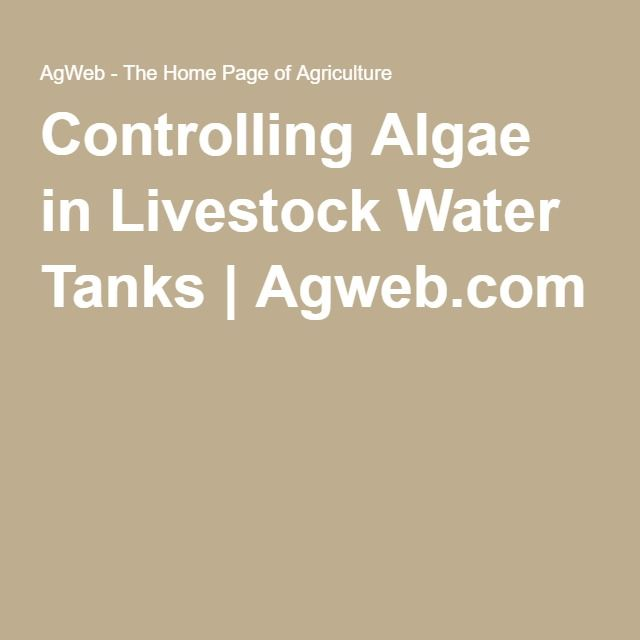 Controlling Algae in Livestock Water Tanks | Agweb.com