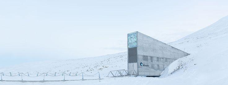 Fin du monde: en Norvège, un coffre-fort géant protège des graines et des données