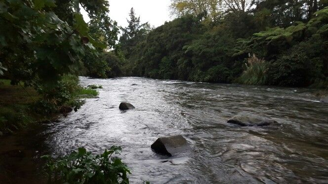 Tawerau River at Kawerau New Zealand