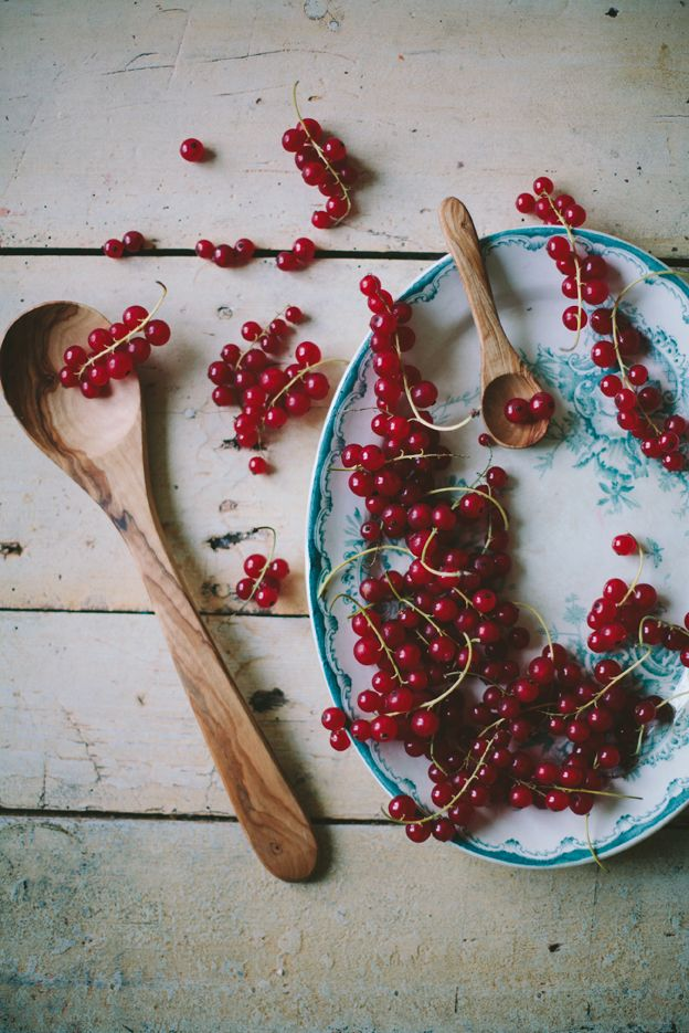 red currants - Olive | Linda Lomelino