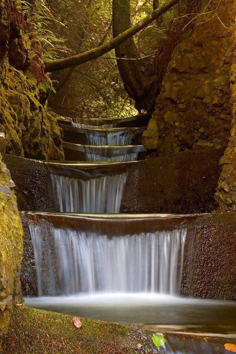 Endless Waterfall - Cummins Creek Wilderness, Oregon.: Oregon, Waterfalls, States Parks, Tiered Waterf, Creek Wilderness, Cummins Creek, Water Fall, Endless Waterf, Photography