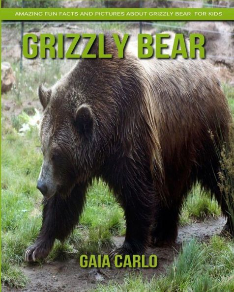 The Best Grizzly Bear Facts Ideas On Pinterest Grizzly Bear - Guy captures first person video of the moment a bear attacks him