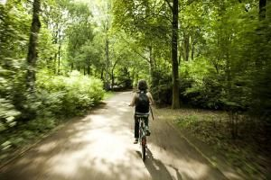 Best Bike Trails in the Washington, DC Area