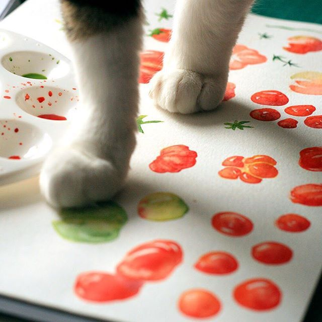 I've got a little helper in the studio today, sketching some tomatoes for a new project #Ceres #crowdsauce #watercolour #paintingcat #pawprint #vegetables @rebeccafeinerdesign Cute cat painting tomatoes with paws x