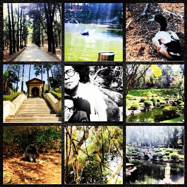 Bosque Los Colomos, Guadalajara México