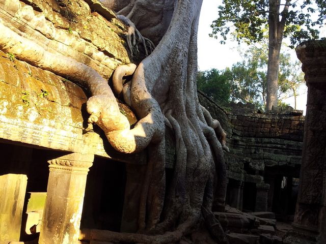 Angkor Wat Tours 3 Days 2 Nights From About Cambodia Travel & Tours