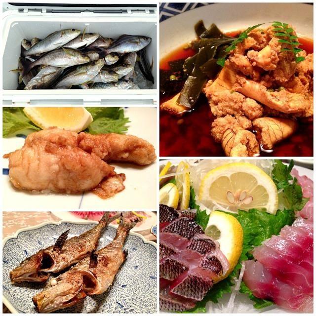 左上:釣った直後のイサキ 左中:白子のバターソテー 左下:塩焼き(上はタカベ) 右上:真子の煮付け 右下:刺身 お腹ポンポコリン(>_<) - 49件のもぐもぐ - イサキ料理 by ShioTonkotsu