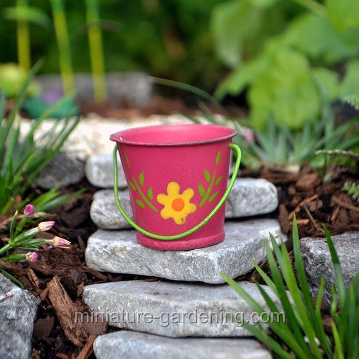 Gnome Garden: 1000+ Images About Mini Garden: Buckets On Pinterest