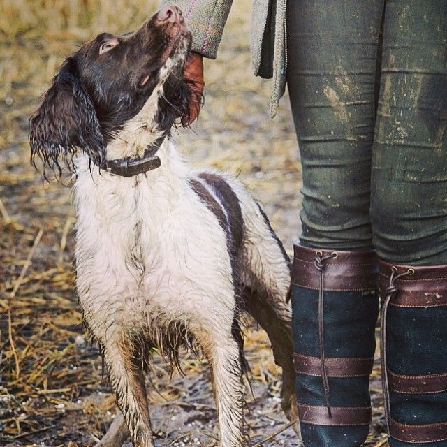The perfect day for a muddy walk with a trusty companion in a pair of Dubarry boots. #wheredoyougoinyours #GORETEX