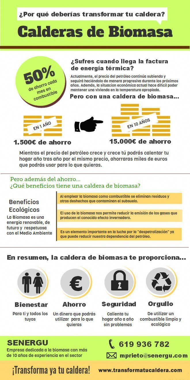 Calderas De Biomasa Energy Technology Green Energy Energy