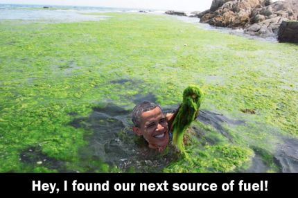 Obama goes green and sinks in the  quagmire along with the USA