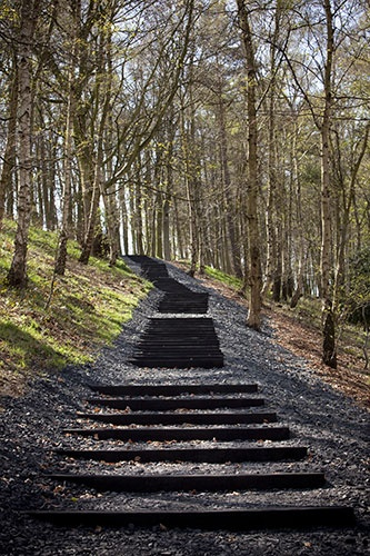 Black Steps, David Nash, Yorkshire Sculpture Park, England