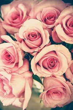 """""""A rose is the visible result of an infinitude of complicated goings on in the bosom of the earth and in the air above, and similarly a work of art is the product of strange activities in the human mind."""" – Clive Bell - See more at: http://justgetideas.com/100-rose-day-quotes-for-your-love/2/#sthash.JTKt1jKG.dpuf"""
