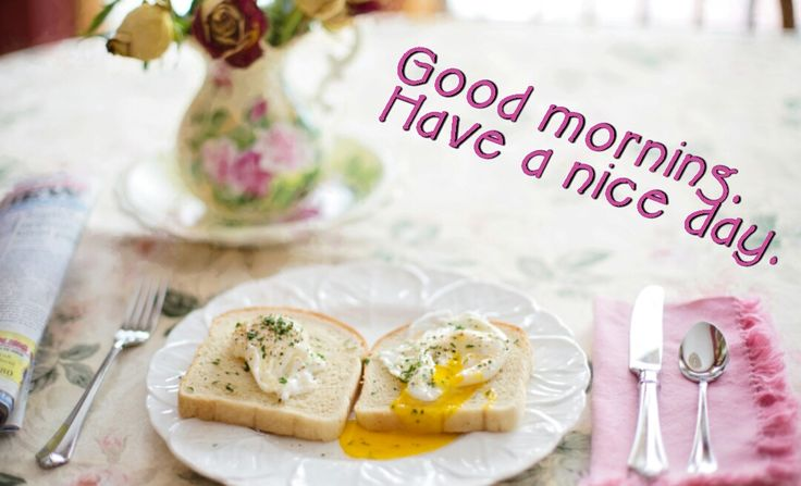 Have a nice day. Good breakfast is important for a good day. Put beautiful text on your pics with our app and make them even greater!