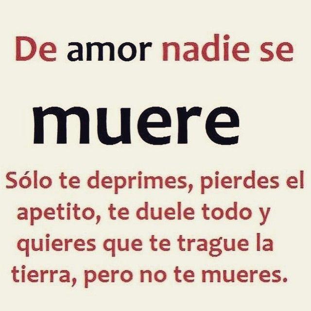 〽️ De amor nadie se muere...