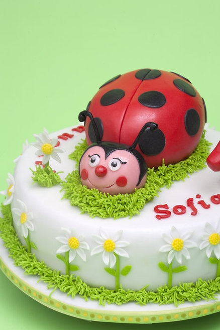 15 best images about lady bird cakes on pinterest lady for Decorazioni torte ladybug