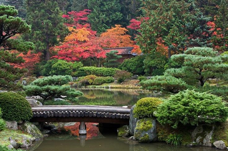 Seattle Japanese Gardens (c) Peter Black