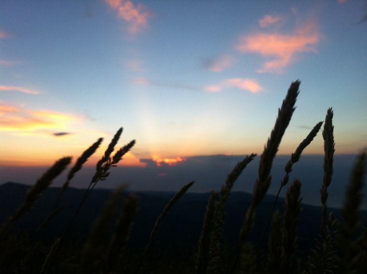 Alba dal Monte Sellaro (Cerchiara di Calabria). 20.6.14 ore 5