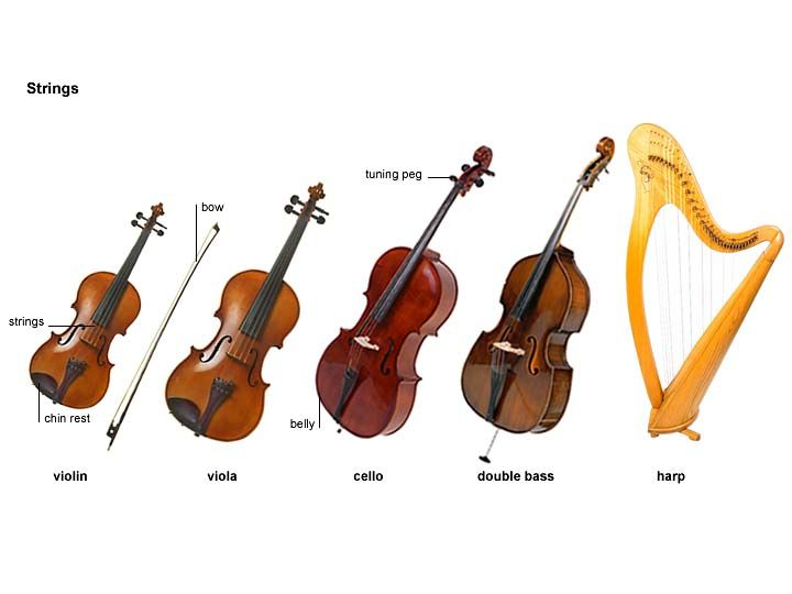 cello noun - Definition, pictures, pronunciation and usage notes | Oxford Advanced Learner's Dictionary at OxfordLearnersDictionaries.com