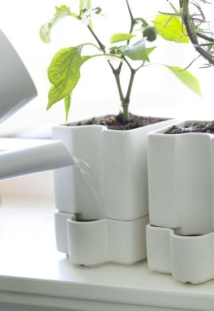 Best 25 Self Watering Pots Ideas On Pinterest