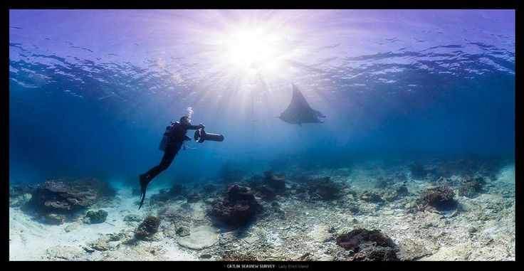 Google Street View goes diving on the Great Barrier Reef with @Catlin Seaview Survey. #qldblog