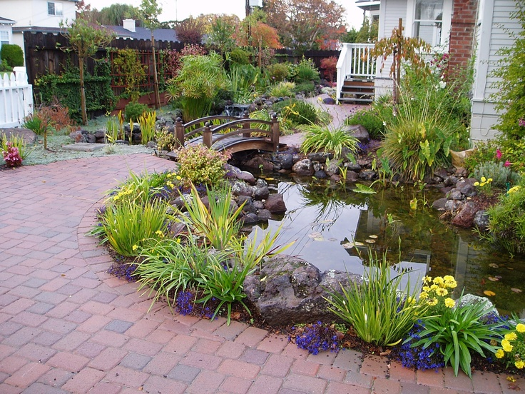 33 best my future koi pond ideas images on pinterest for Ornamental fish pond maintenance