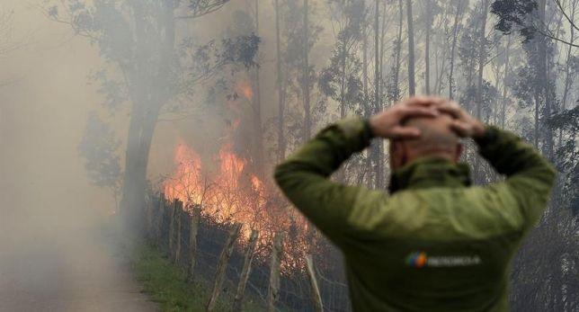 El fuego fue el gran protagonista de los últimos días de 2015 en Asturias, Cantabria o País Vasco. Mientras continúan las investigaciones sobre las causas de los incendios, algunos ecologistas señalan a los ganaderos, que se defienden afirmando que han mantenido el pastizal comunal en un estado mejor. - laSexta