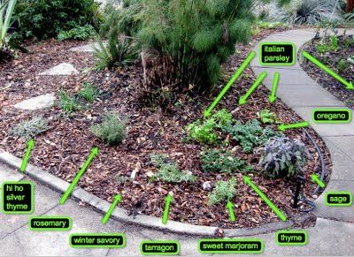 19 best Herb Garden Plans images on Pinterest Herb gardening