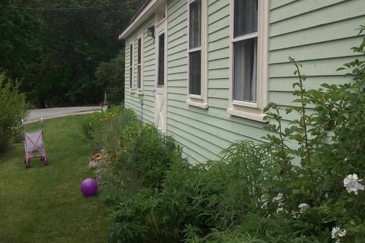 Cottage garden just starting to bloom