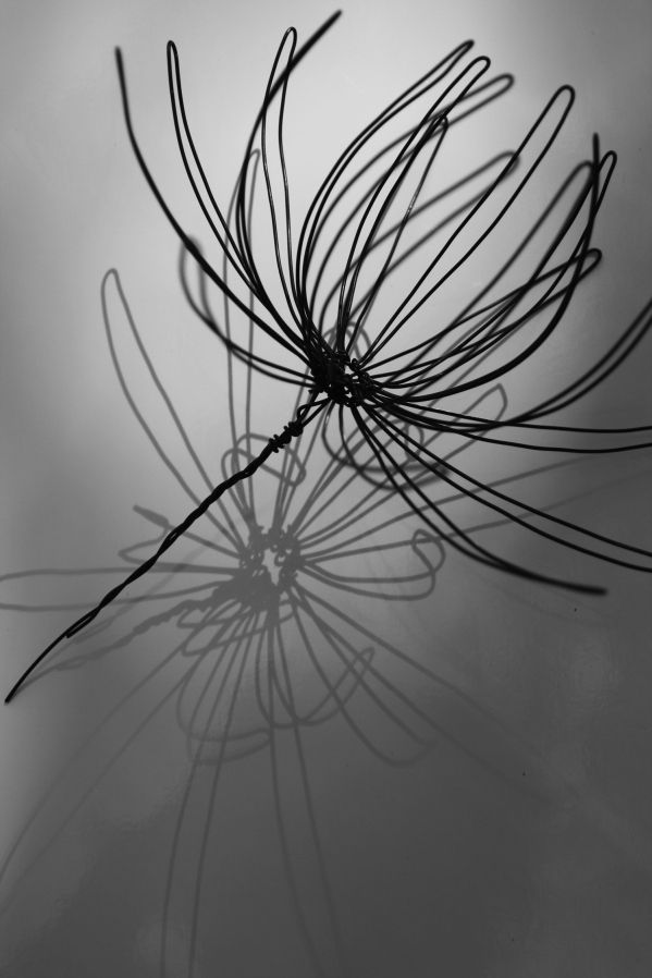 Fleur en fil de fer. / Wire flower.